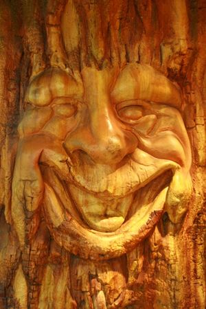 smiling face of an old tree in an enchanted forest Stock Photo