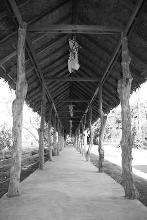 walkway with lanterns in black & white background photo