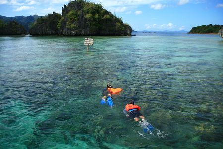 snorkelers: two snorkelers exploring the beauty of underwater marine life