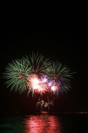 colorful dandelion fireworks by the bay
