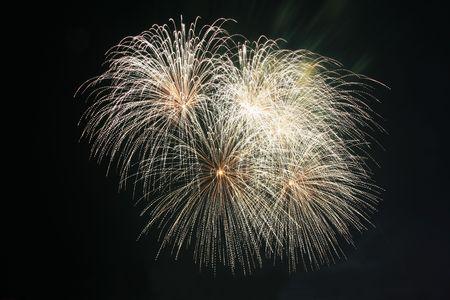 koosh ball fireworks against the dark sky