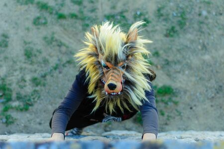 Woman in wolf mask and black dress Stock Photo