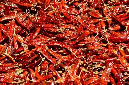 sundried: Sun-dried chillies Stock Photo