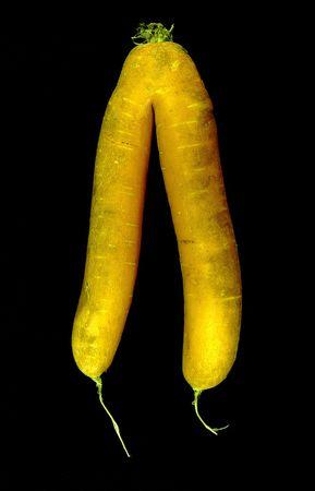 assimilation: A deformed orange carrot on black background