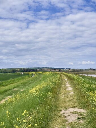 Norfolk Coastal Path & Pedders Way looking towards Brancaster Staithe. Mow Creek to the right, Deepdale Marsh to the left.