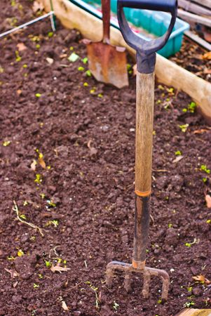 Garden Plot with Pitchfork, Shovel and Other Garden Tools
