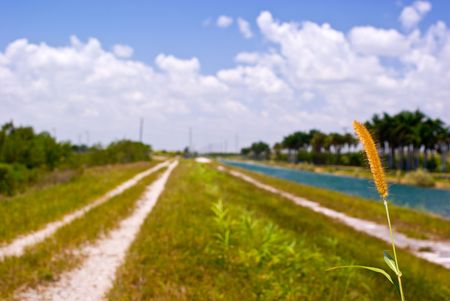 Florida Canal and Levee with Blue Sky and Distant Clouds