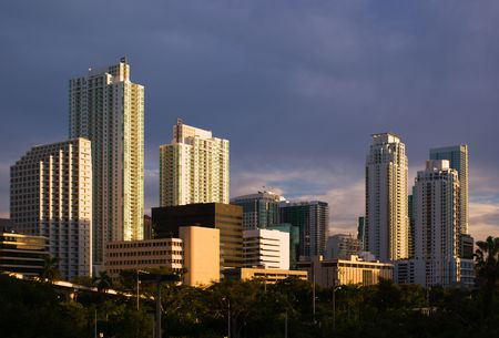 high rises: Downtown Miami Residential and Office Buildings  Stock Photo