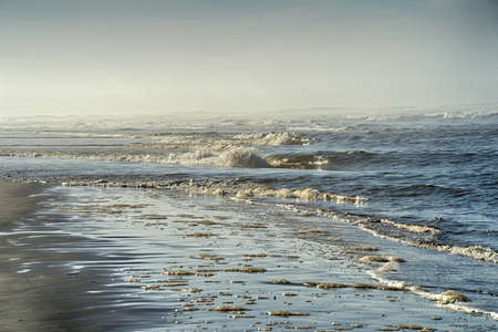 pacific northwest: low surf on a foggy Pacific Northwest beach Stock Photo