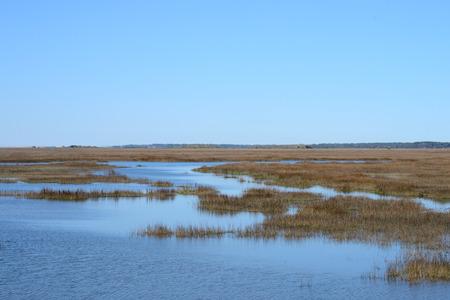 estuary: Coastal Wetlands Stock Photo