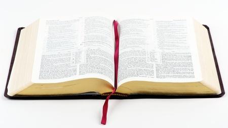 biblia: Biblia abierta sobre un fondo blanco aislado Foto de archivo