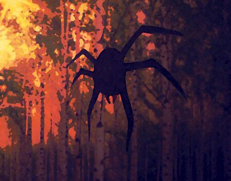 the spider hangs in the evening forest