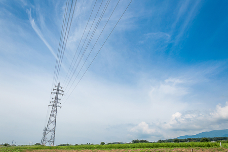 electric grid: High voltage transmission tower on blue sky and green rice.