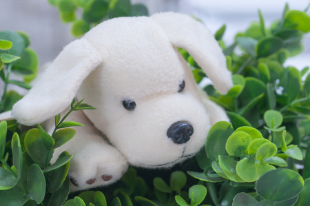 plush toy: Cute plush toy dog and fake flower