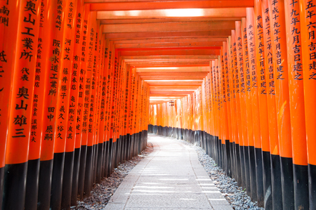 vermilion: Thousands of vermilion torii gates at Kyoto Fushimi Inari Shrine,Red Tori Gate at Fushimi Inari Shrine in Kyoto, Japan, selective focus, soft focus and blur image