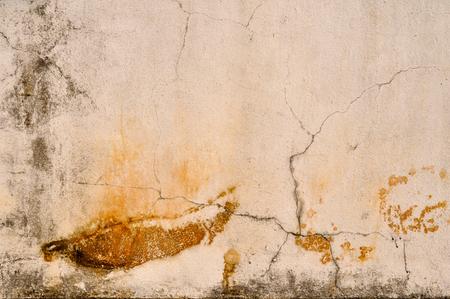 질감 된 시멘트 벽