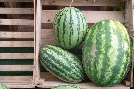 Watermelon in the wooden box