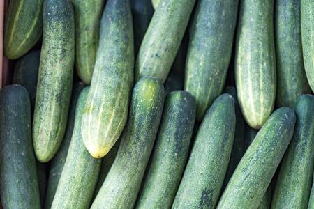 Pile of fresh green cucumber Stock Photo