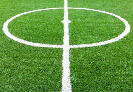 soccer field grass