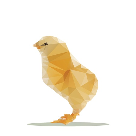chicken polygon  photo