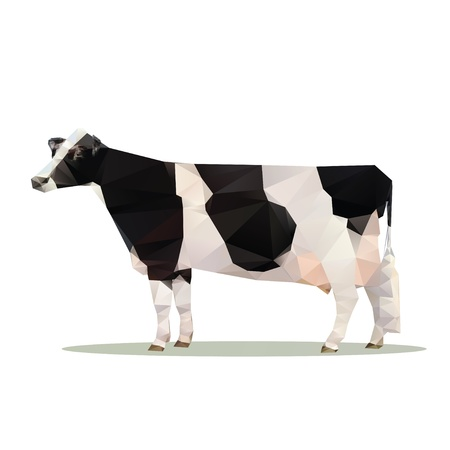 dairy cattle: cow polygon