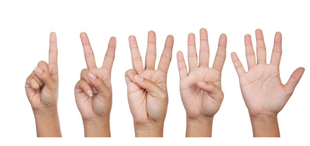 Hands, fingers and numbers  On a white background  Isolated