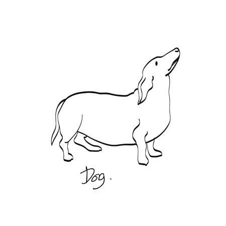 shaky: dog sketch