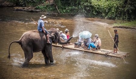 watergun: Chiang Mai, THAILAND - april 15, 2014: elephants eject water to Tourists on rafting for water festival, 15 april 2014