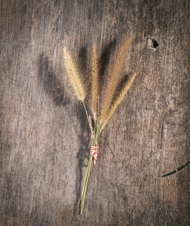 wild flowers on a wooden background