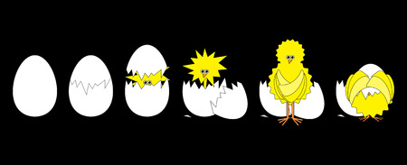 hatched: Comic set of hatched funky chicken