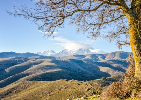 parc naturel: A snow covered Monte Cinto at dawn taken from the Col de San Colombano in northern Corsica at sunrise