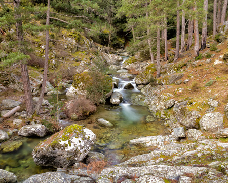 parc naturel: The clear mountain waters of the Tartagine river in the Tartagine forest near Mausoleo in the Balagne region of Corsica Stock Photo
