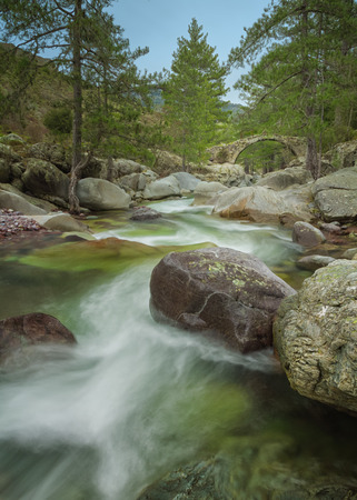 parc naturel: The clear mountain waters of the Tartagine river flow under a Genoese bridge Stock Photo
