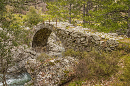 parc naturel: The clear mountain waters of the Tartagine river flow under an ancient stone Genoese bridge