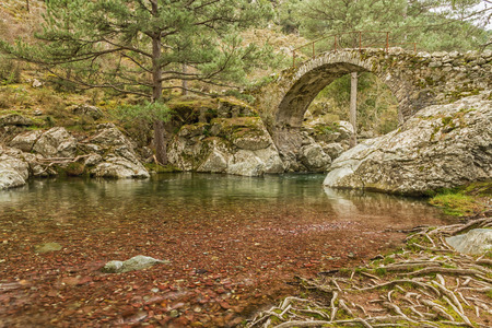 parc naturel: The clear mountain waters of the Tartagine river flow under an ancient Genoese bridge