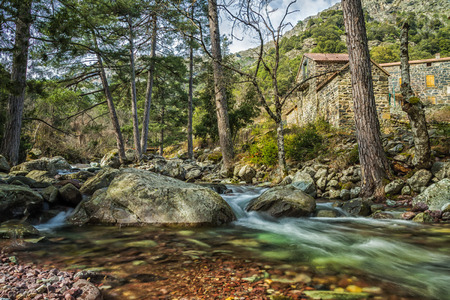 parc naturel: The clear mountain waters of the Tartagine river flow past the Maison Forestiere