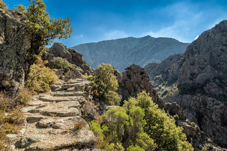 scala: A rocky pathway on the Scala di Santa Regina trail in central Corsica near Corscia Stock Photo