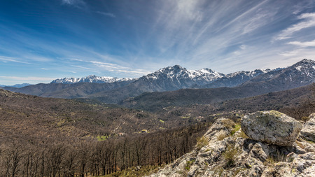 wispy: View of snow covered Monte Pardu and San Parteo in the Balagne region of north Corsica with rocks, trees and maquis in the foreground and blue skies and wispy clouds