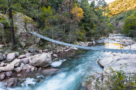 Pedestrian steel rope bridge across the cascading Figarella river in the Bonifatu Forest near Calvi in Corsica with pine trees, autumn colours, and rocks in the background