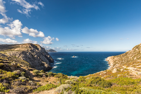 View across the maquis and rocky coastline of Revellata on the west coast of Corsica near Calvi toward the turquoise Mediterranean sea with blue skies with fluffy clouds