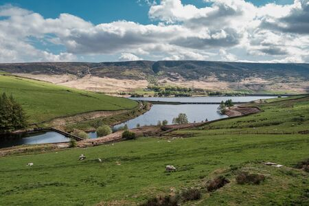 Sheep grazing in a field at the foot of Woodhead Pass in Derbyshire with Woodhead reservoir and Woodhead bridge in the distance