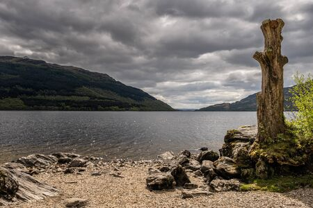 An old tree stump and pebble beach on the shoreline of Loch Lomond in Scotland lit by the sun and with dark clouds overhead