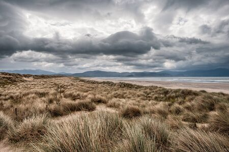 Dark clouds over sand dunes and the large sandy beach and distant hills of Inch Beach on the Dingle Peninsula in the south west of Ireland Stock fotó