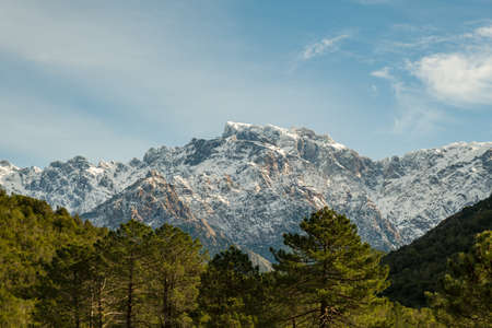 The rocky 2525 metre high snow capped peak of Paglia Orba mountain in Corsica with pine trees in the foreground