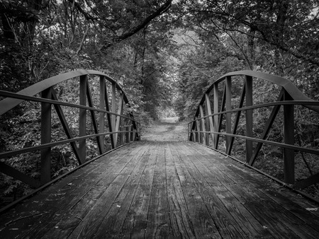 A black and white image of a wooden bridge on a nature trail