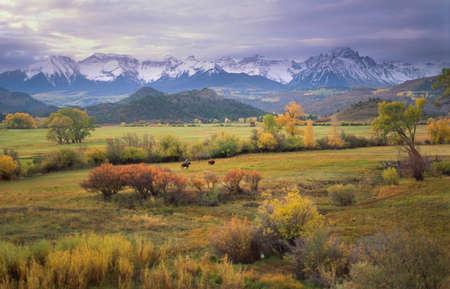 tiefe: Auf einem seltenen bewölkten Morgen im Südwesten Colorado, rundet ein Viehzüchter die letzten Streu Vieh kurz vor Tagesanbruch. Lizenzfreie Bilder