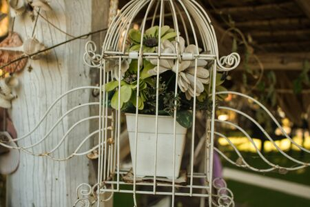 This unique vintage photo shows a flowerpot with white and green flowers locked in an old bird cage. The picture was taken in Hua Hin Thailand Stock Photo