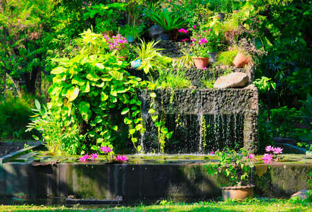 This unique image shows a beautiful waterfall and water lily in the world famous Lumphini Park in Bangkok