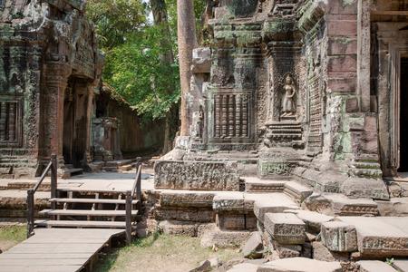 raider: Ta Prohm temple also known as the Tomb Raider temple in the Angkor complex, Cambodia