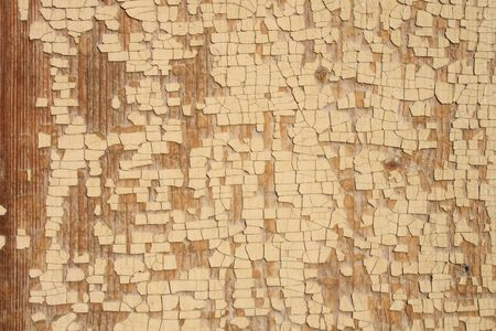 very old historical background (wood and white surface) Stock Photo - 2737459